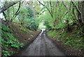 TQ0319 : Wey South Path heading north by N Chadwick