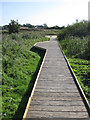 TF7543 : New boardwalk from Fen Hide by Pauline Eccles