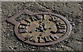 J3281 : Belfast  Water Works access cover, Glengormley by Albert Bridge