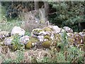 NJ7601 : A moss covered dry stone wall by Stanley Howe