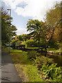 SD8700 : Rochdale Canal, Lock#73 (Ten Acres) by David Dixon