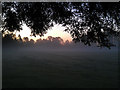 SK4833 : Misty West Park sunrise by David Lally