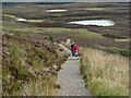 NJ0011 : A path on Meall a' Bhuachaille by Walter Baxter