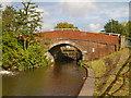SJ8598 : Rochdale Canal, Royle Bridge by David Dixon
