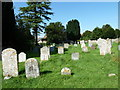 SY6593 : St Mary, Stratton: churchyard (H) by Basher Eyre