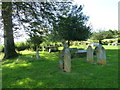 SY6399 : Sydling St Nicholas: churchyard (f) by Basher Eyre