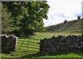 SK1860 : Entering Long Dale from the west by Neil Theasby