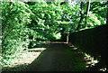 TQ0339 : Wey South Path by N Chadwick