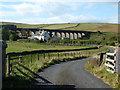 NT5205 : Shankend Farm and Viaduct by Peter Bond