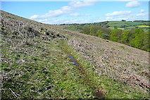 SX7179 : Eastern flank of Hamel Down by Graham Horn