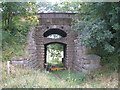 SE4532 : Unusual railway bridge near Highroyds Wood by John Slater