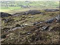 J1611 : Way-marked section of path on the western side of Slieve Foye by Eric Jones