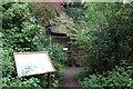 SJ4974 : Helsby Quarry, The Wall Exposier by Jeff Buck
