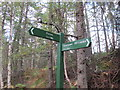 NJ0555 : Signpost on the Dava Way by Alan Hodgson