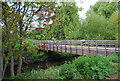 TQ3774 : Bridge over the River Ravensbourne, Ladywell Fields by N Chadwick