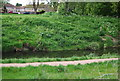 TQ3774 : River Ravensbourne, Ladywell Fields by N Chadwick