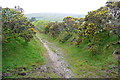 SX6760 : Bridleway on Aish Ridge by Graham Horn