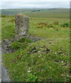 SX5663 : Roadside stone with a view by Graham Horn