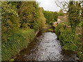 SK0294 : Glossop Brook by David Dixon