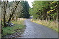 NT2608 : Forestry road near Over Dalgliesh by Peter Bond