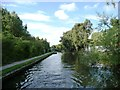 SP0481 : Narrows on the Worcester & Birmingham Canal by Christine Johnstone