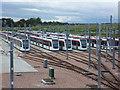 NT1772 : Edinburgh trams at Gogar : Week 41