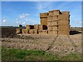 TF1268 : Straw bales near Bardney by Oliver Dixon