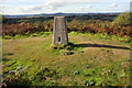 SY5092 : Trig point on Shipton Hill by Roger Templeman