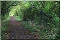 SP8227 : Stewkley Lane path by Philip Jeffrey