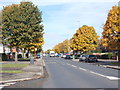 SE2927 : Middleton Park Avenue - viewed from Middleton Park Grove by Betty Longbottom