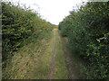 TL5962 : Byway along A14 by Hugh Venables