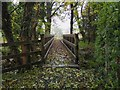 NS4286 : Footbridge, Aber Burn Gartocharn by Jim Barton