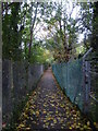TQ3966 : Footpath alongside railway line by Ian Yarham