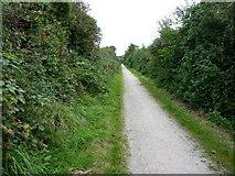 SW7045 : The Portreath Tramroad near Mawla by Richard Law