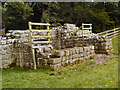 NY9269 : Remains of Brunton Turret, Hadrian's Wall by David Dixon