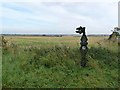 TF1595 : National Cycle Network milepost on the Lincolnshire Wolds by Oliver Dixon