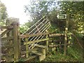 SX5065 : Blocked stile, Roborough Down by Derek Harper