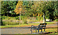 J3675 : Seat, Victoria Park, Belfast by Albert Bridge
