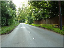 SU9984 : Fulmer Common Road by Alexander P Kapp