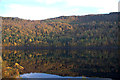 NH2627 : East end of Loch Beinn a' Mheadhion, Glen Affric by Mike Pennington