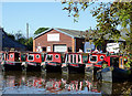 SJ5948 : Narrowboats for hire at Wrenbury, Cheshire by Roger  Kidd
