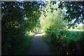 SU8485 : Thames Path by N Chadwick