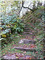 NR7384 : Old steps at Taynish Mill by sylvia duckworth