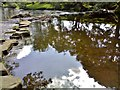 SK2181 : Stepping stones on River Noe near Hathersage by Chris Morgan