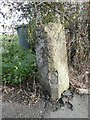 SE2329 : Boundary stone, Gildersome Lane by Humphrey Bolton