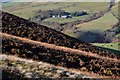 SK1389 : Blackden View Farm from Ashop Moor by Neil Theasby