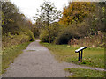 SJ8893 : Path in Highfield Country Park by David Dixon
