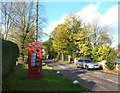 SP6206 : The Village Phone Box by Des Blenkinsopp