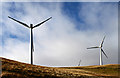 NN9806 : Green Knowes wind farm by William Starkey