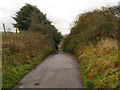 SJ9696 : Dukinfield, Yew Tree Lane (Track) by David Dixon